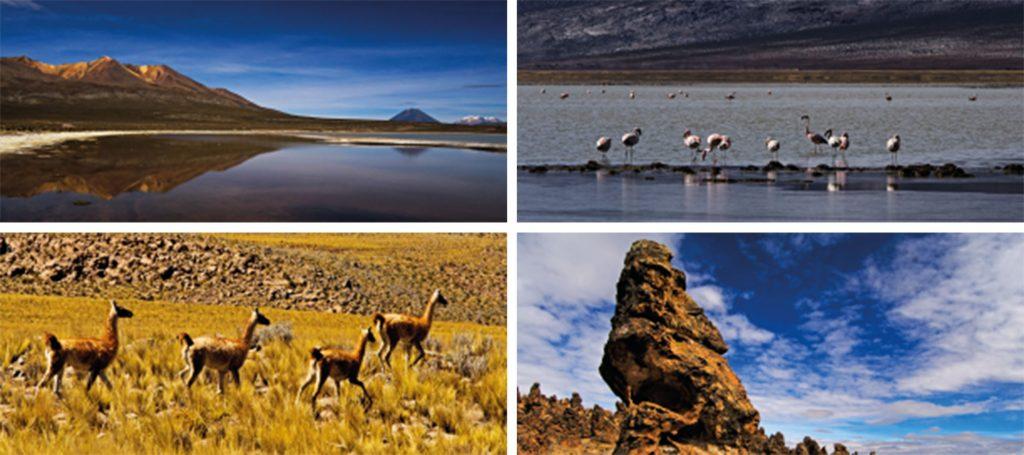 Reserva de Salinas y Aguada Blanca